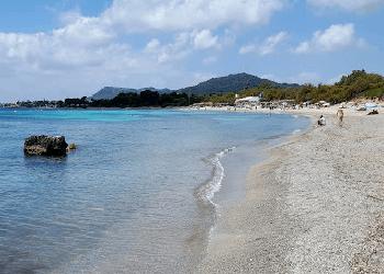 alquiler padel surf mallorca- costa de los pinos playa