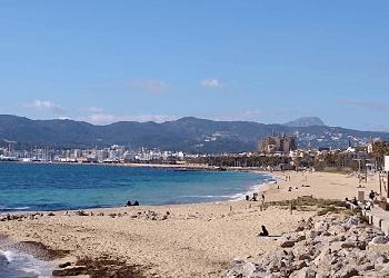alquiler padel surf mallorca-pere antoni playa